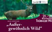 """""""Außergewöhnlich Wild"""" - Das UNESCO-Biosphärenreservat Thüringer Wald lädt zum Wild-Genuss-Wochenende ein"""